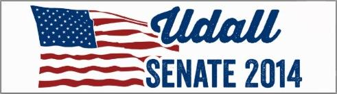 Tom Udall U.S. Senator for New Mexico bumper sticker